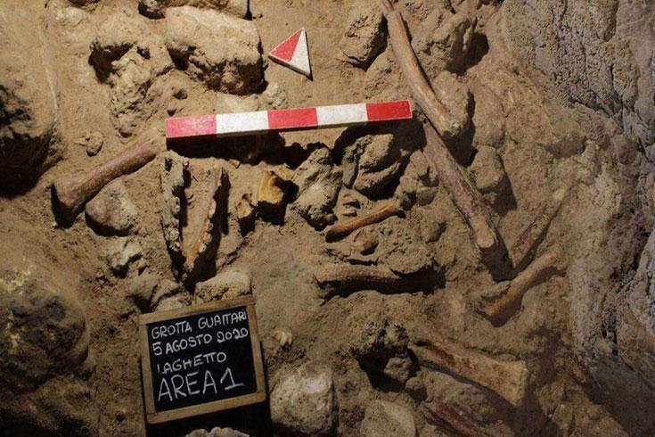 নিয়ানডারথাল ও প্রাচীন মানুষের গুণতে শেখার ইতিহাস