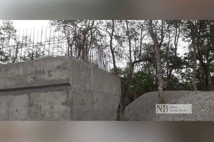 বনাঞ্চলে সড়ক-সেতু, ঝুঁকিতে টেংরাগিরি