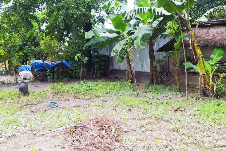 সরকারি স্কুলের ২ একর জমি 'বেদখলে'