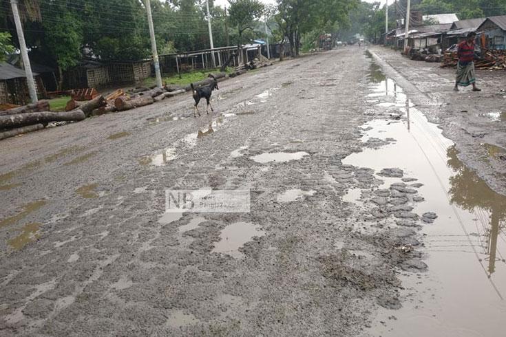 বিশ্বরোডের বিষফোড়া ঝিনাইদহের ৫২ কিলোমিটার সড়ক