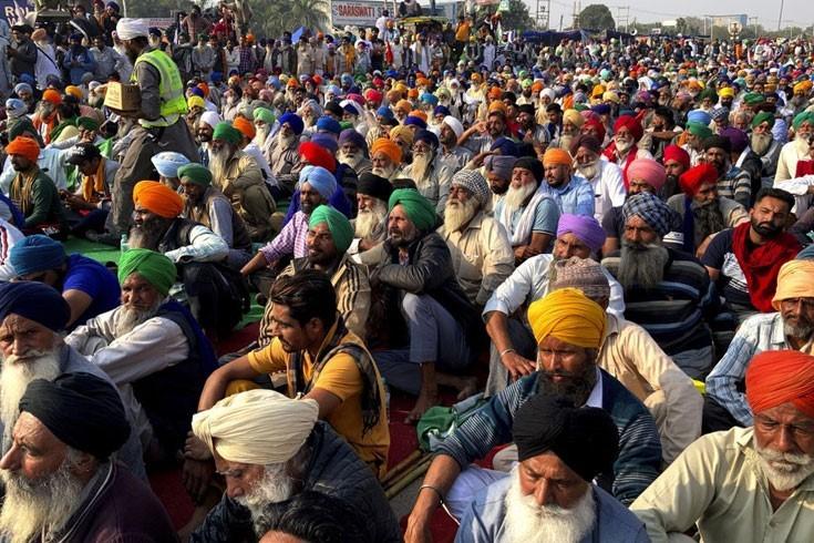 ভারতে কৃষি আইন: 'তদন্ত কমিটির চার জনই পক্ষের'