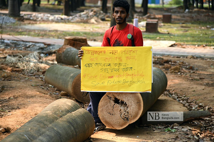 উদ্যানের গাছ কাটায় ক্ষোভ, সরকার বলছে 'মহাপরিকল্পনা'