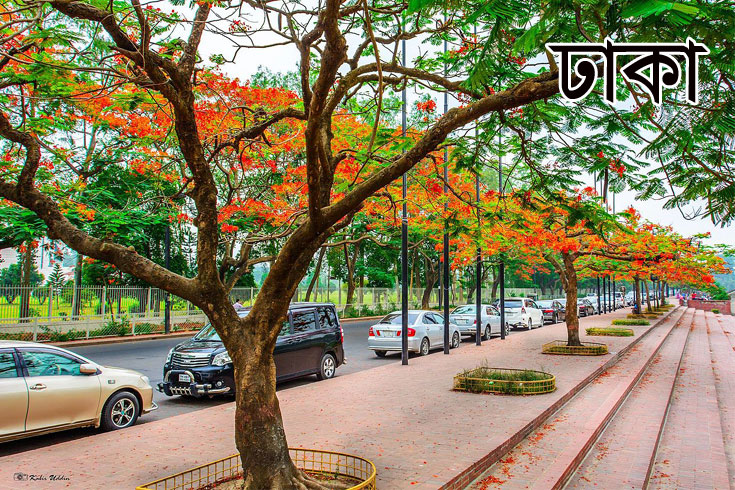 ২০তম গ্রেডে নিয়োগ দিচ্ছে ঢাকা জেলা প্রশাসকের কার্যালয়