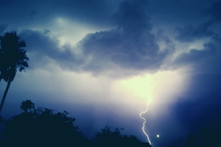 নোয়াখালীতে বজ্রপাতে মৃত্যু হলো ৫ গরুর