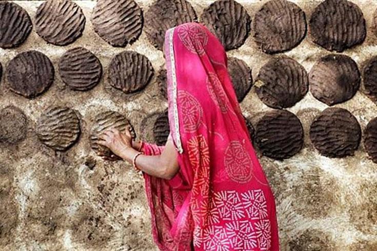 ছত্তিশগড়ে ৮০০ কেজি গোবর চুরি