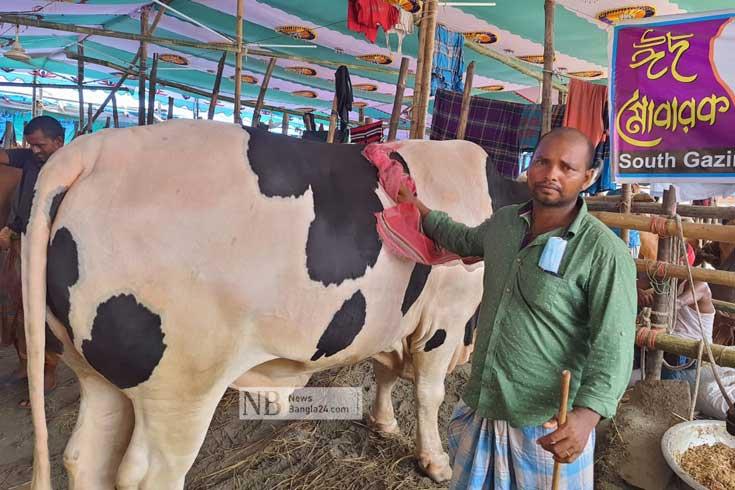 টাঙ্গাইলের 'হিরো' গাবতলী হাটে